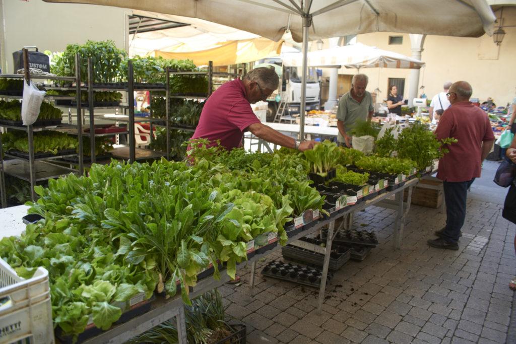 Saturday morning market in Pescia